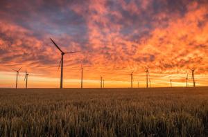Photo of windmill field